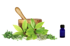 leaves mortar and pestle